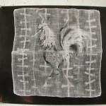 "Debra Levie 'Untitled 1' Photogram Size 22""x26"""