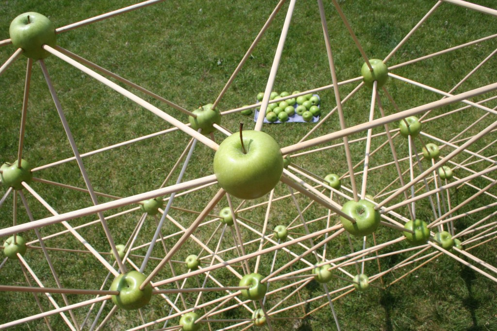 """Apple Structure"" detail"