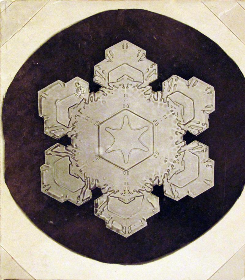 Photomicrograph, c. 1883-1931