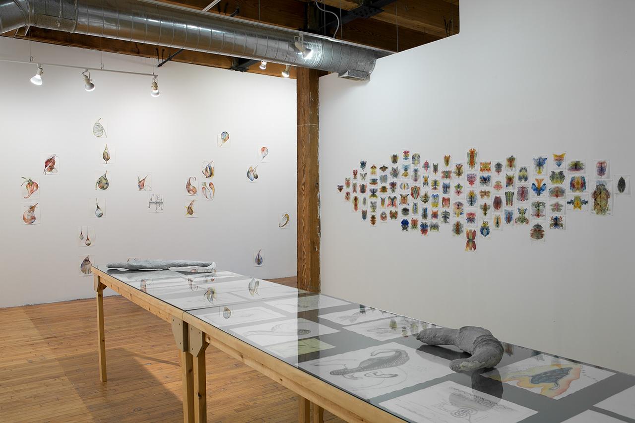 Installation view. Photo: Clare Britt