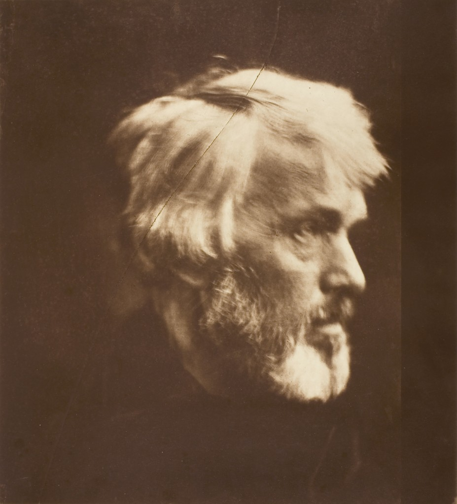 "Julia Margaret Cameron. ""Thomas Carlyle,"" 1867, printed 1875. The Art Institute of Chicago. Alfred Stieglitz Collection."