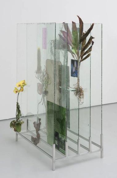 """The Museum Archive (dedicated to Edward Steichen's Delphiniums, MOMA 1936),"" 2014. Glass, resin, plants, beam splitter glass, photo gels, photographic prints and film. Photo: James Prinz"