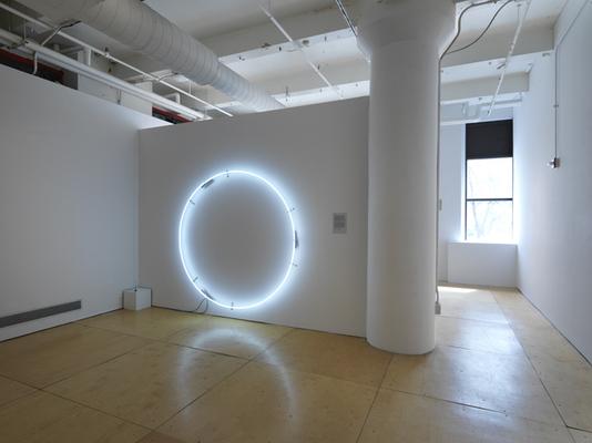 "Jan Tichy. ""Chicago Nature (After Nauman),"" 2014 neon, 62"" x 62"" x 10"""