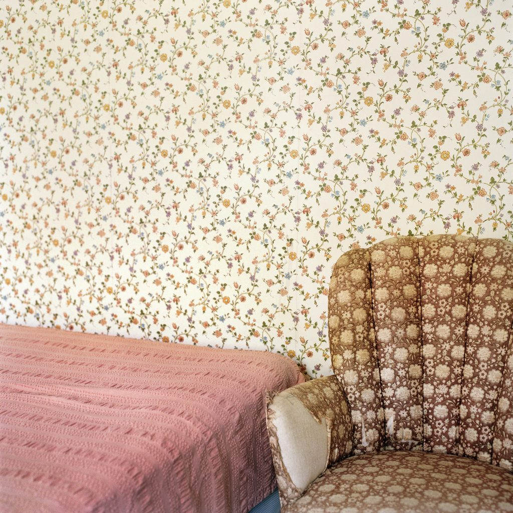 "Frances F. Denny. ""Floral Patterns (Woods Hole, MA)"""
