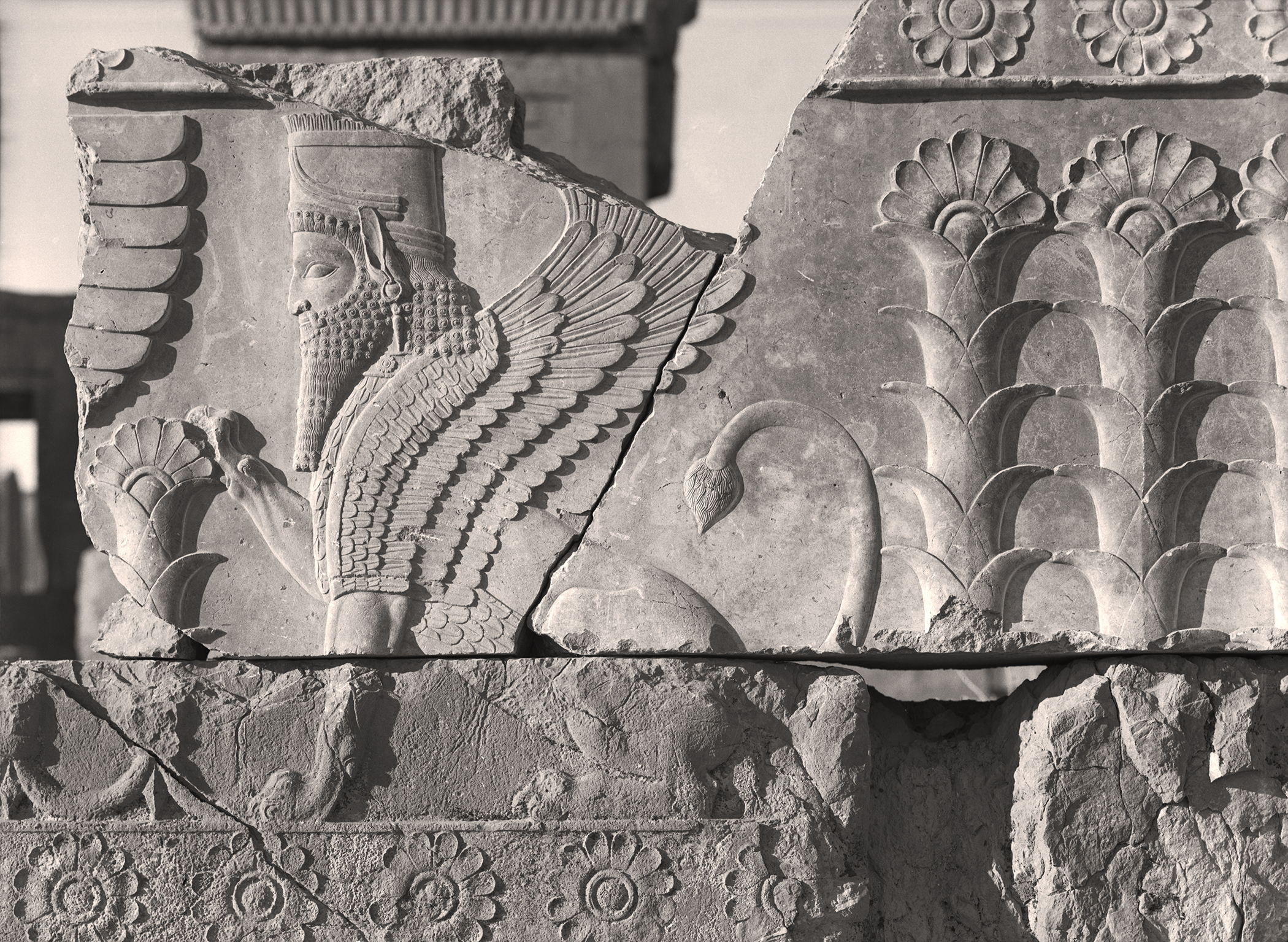 Timely Reminders In Timeless Ruins A Review Of Persepolis Images Of An Empire At The Oriental Institute Newcity Art