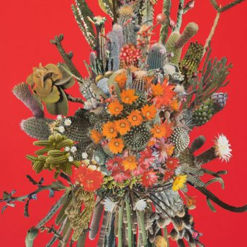 Flaunting Fauvist Flora and Fauna: A Review of Stephen Eichhorn at Carrie Secrist Gallery