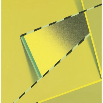 A Living Tribute to a Geoform Master: A Review of Tomma Abts at the Art Institute of Chicago