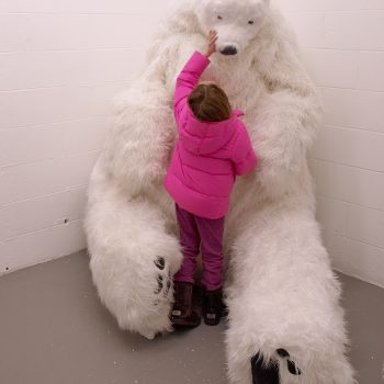 Come Sit on a Polar Bear's Lap: 4th Ward Project Space Celebrates Its Tenth Anniversary