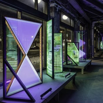 A Hack in the System: Raising Chameleon Blind in Chicago's Vacant Spaces