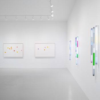Slow Down, See Deeply: A Review of Spencer Finch at Rhona Hoffman
