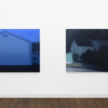 Slipping Glimpses: A Review of Nathaniel Robinson at Devening Projects