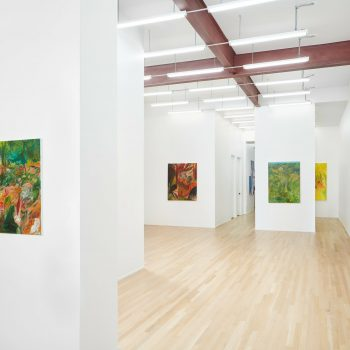 In Between the Greens: A Review of Soumya Netrabile at Andrew Rafacz and Pooja Pittie at McCormick Gallery